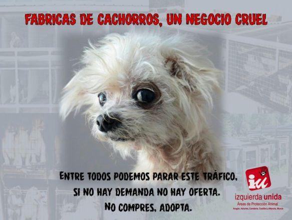 cartel1campaña11