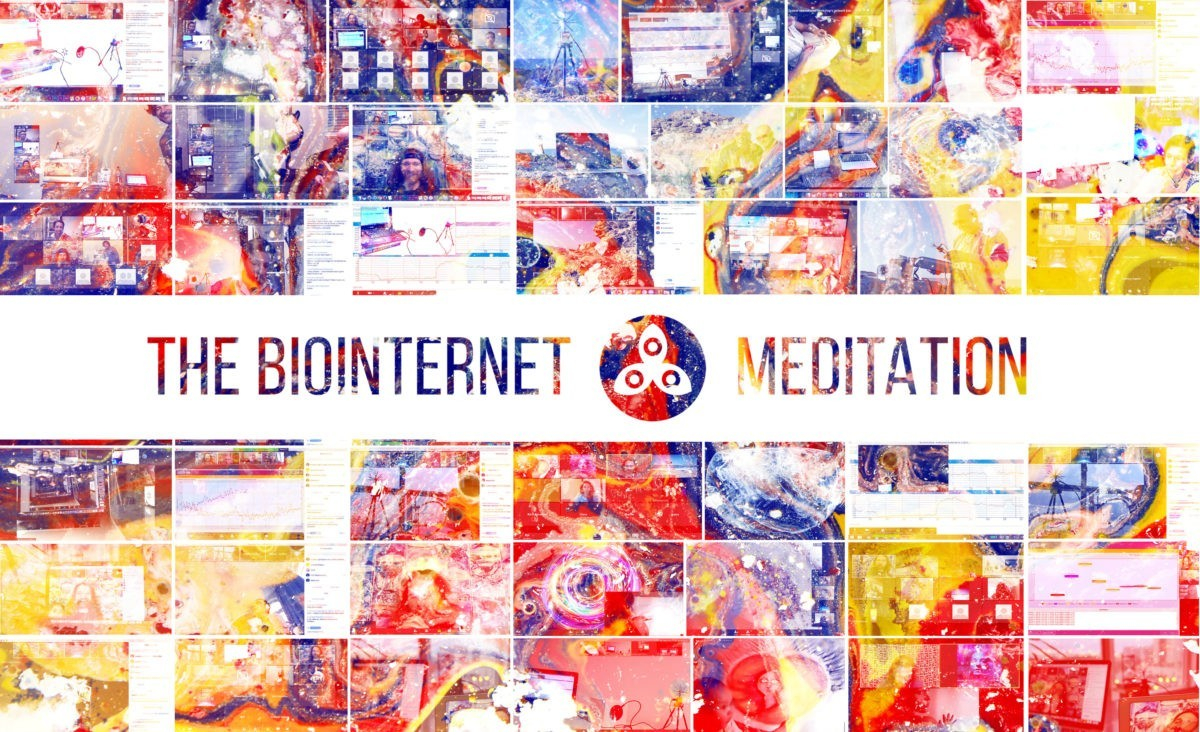 The Biointernet Meditation