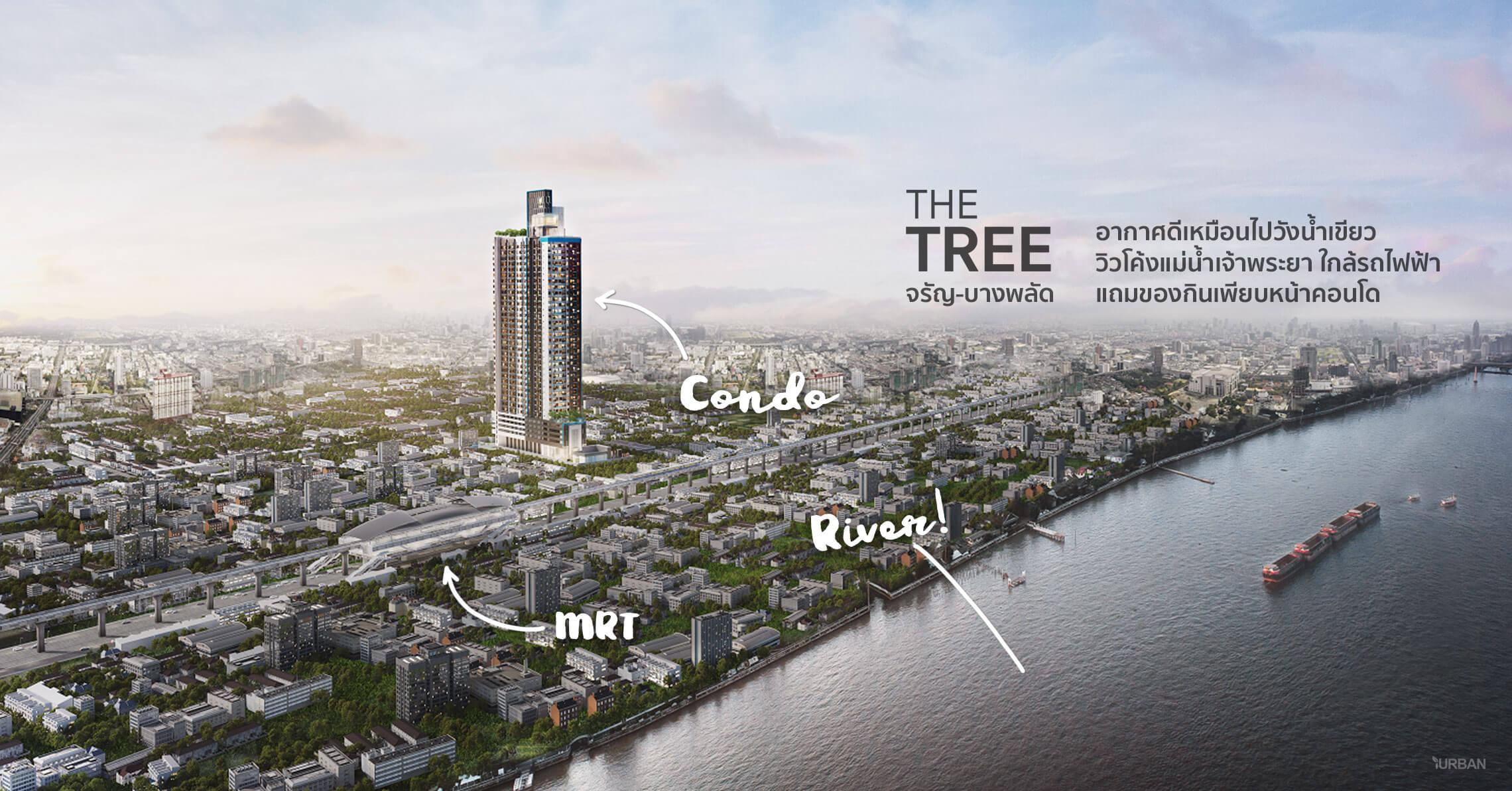 The Tree จรัญ-บางพลัด คอนโดมีระบบอากาศดี ติดรถไฟฟ้าแต่ได้วิวสวยโค้งแม่น้ำเจ้าพระยา 13 - Premium