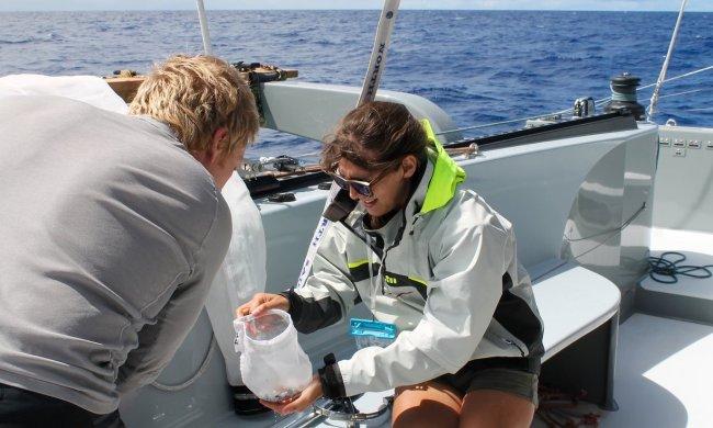 4062 650x390 ทำความสะอาดครั้งใหญ่ที่สุดของโลก ล้างมหาสมุทร โดยฝีมือเด็กอายุ 19 ปีกับ Ocean Cleanup Project