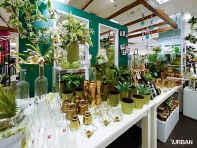 %name 8 วิธีตกแต่งบ้านให้ดูธรรมชาติแบบ Organic Living