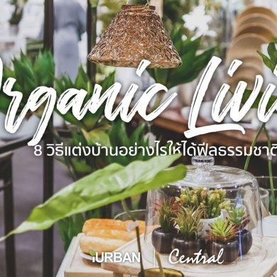 8 วิธีตกแต่งบ้านให้ดูธรรมชาติแบบ Organic Living 21 - decor