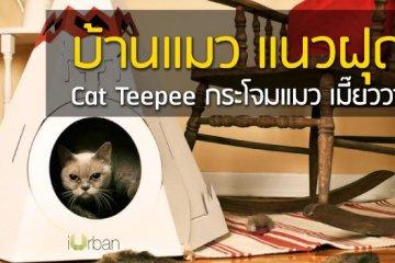 Cat Teepee บ้านน้องแมว แนวฝุดๆ เมี๊ยววว~ 8 - green product