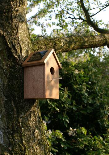 solarbirdhouse01