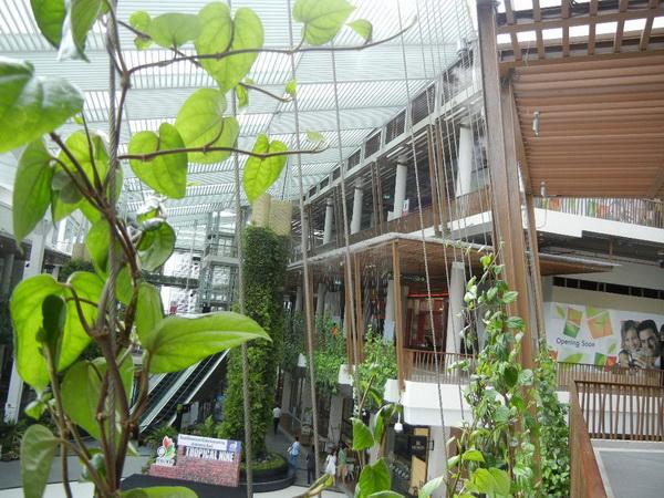 The Nine Neighborhood Center ที่ช้อป ที่กิน แวดล้อมด้วยสีเขียว 15 - Shopping