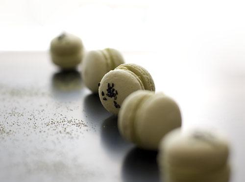 Macaron-GreenTea