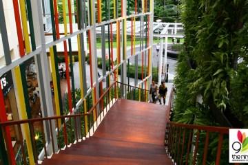 The Nine Neighborhood Center ที่ช้อป ที่กิน แวดล้อมด้วยสีเขียว 4 - Shopping