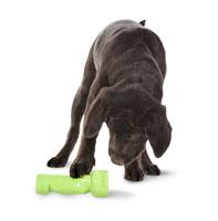LINK Dog1 Busy Buddy Linkables ของเล่นน้องหมา