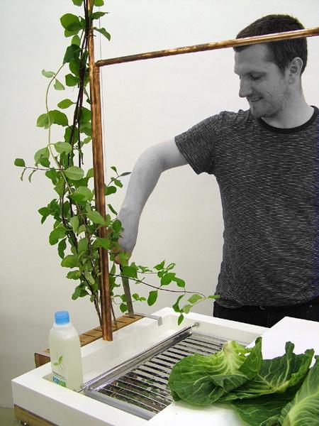 ห้องครัวในยุคต่อไป..ต้องนำขยะและน้ำทิ้งกลับมาใช้ปลูกผักในครัวได้ 16 - รีไซเคิล