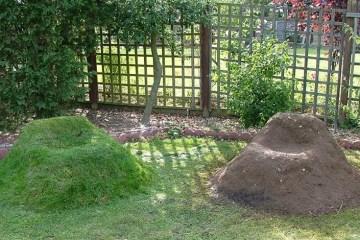 """ทำ """"เก้าอี้หญ้า"""" จาก """"ทราย"""" ไม่ใช้แล้ว ไอเดียตกแต่งสวนง่ายๆ แถมได้ประโยชน์"""