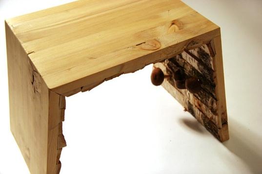 25550102 194030 เก้าอี้ปลูกเห็ด..mushrooms ate my furniture' chair.