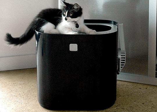 Modkat ห้องน้ำของน้องแมว 15 - Modkat