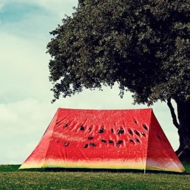 Luxury tent ดีไซน์แสนเก๋ ตรงตามไลฟ์สไตล์ของคุณ 17 - Picnic
