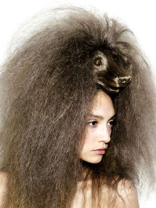 Animals Hair ทรงผมทรงหัวสัตว์แสนเก๋ 15 - animals
