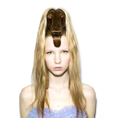 Animals Hair ทรงผมทรงหัวสัตว์แสนเก๋ 14 - animals