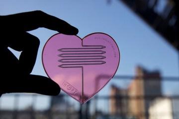 Heart part // Knife, fork and scoop ในชิ้นเดียว!! 15 - fork