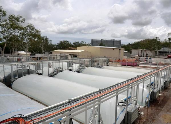 พลังงานจากสาหร่าย..อนาคตพลังงานของไทย 18 - biodiesel