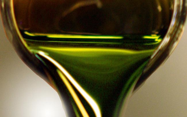 พลังงานจากสาหร่าย..อนาคตพลังงานของไทย 13 - biodiesel