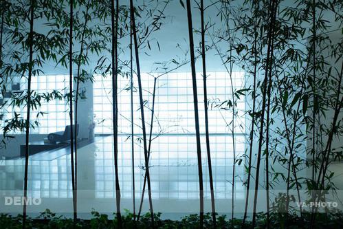 3468401866 b294dcdd13 Hotel Kapok (Blur Hotel) โรงแรมเบลอ ณ กรุงปักกิ่ง