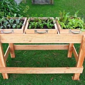 "DIY: ""Garden Bench"" ลิ้นชัก-กระถางใบใหม่ของเหล่าต้นไม้และพืชพรรณขนาดเล็ก 25 - DIY"