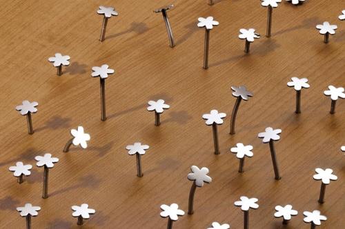 25550609 153014 มาปลูกตะปูดอกไม้กันเถอะ :)