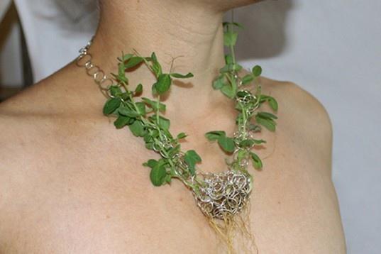 25550702 201154 The Green  Necklace..เครื่องประดับที่มีเมล็ดพันธุ์แห่งความรักต่อโลก แทนอัญมณี