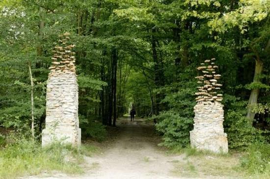 25550704 190722 งานศิลปะ ที่เล่นตลกกับแรงดึงดูดของโลก..เสกให้กิ่งไม้, ก้อนหินลอยได้