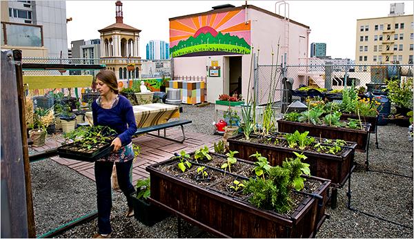 17roof600.1 Green on Rooftop Restaurant แนวคิดเรื่อง สวนครัวบนตึก ระฟ้า