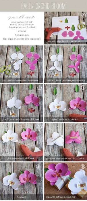 25550826 163954 DIY และเทมเพลท ดอกกล้วยไม้กระดาษ  ไว้ติดห่อของขวัญ