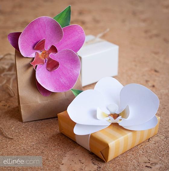 25550826 164001 DIY และเทมเพลท ดอกกล้วยไม้กระดาษ  ไว้ติดห่อของขวัญ