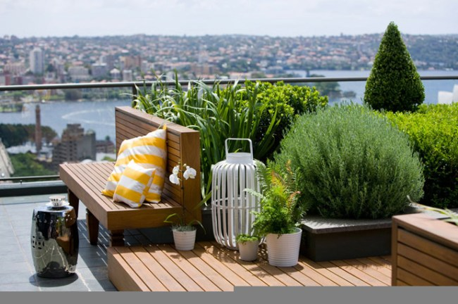 "Green on Rooftop Restaurant แนวคิดเรื่อง ""สวนครัวบนตึก ระฟ้า"" 20 - Rooftop Restaurant"