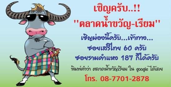 contact buff21 550x282 ตลาดนัดขวัญเรียม Kwan Riam Floating Market