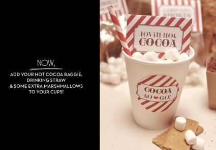 DIY: S'MORES AND HOT COCOA KIT  8 - cracker