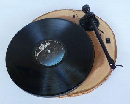 """สวยแบบอนุรักษ์+เสียงคมด้วย """"Audio Wood Chipmunk""""  14 - Audio Wood Chipmunk"""