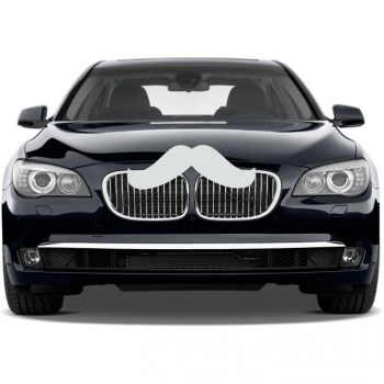 Giant Car Mustache Car Decal รถมีหนวด 16 - mustache