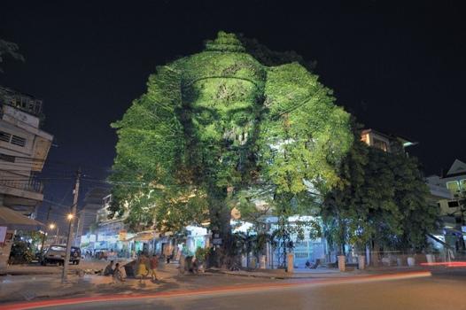 25551126 173701 ภาพประติมากรรมขอมบนต้นไม้..คืนจิตวิญญานและพลังจากธรรมชาติสู่งานประติมากรรมอีกครั้ง