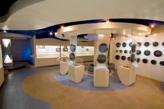 1275237 524x350 Bangkok Seashall Museum สู่โลกมหัศจรรย์ของเปลือกหอย ณ ถนนสีลม