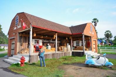 Swiss Sheep Farm (29)
