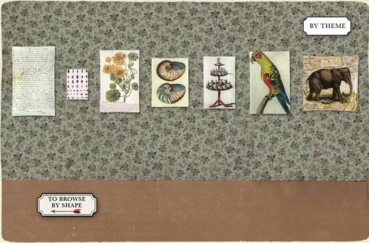 decoupage theme bg image 531x350 John Derian กับงานภาพพิมพ์สไตล์ยุโรปในศตวรรษที่ 19