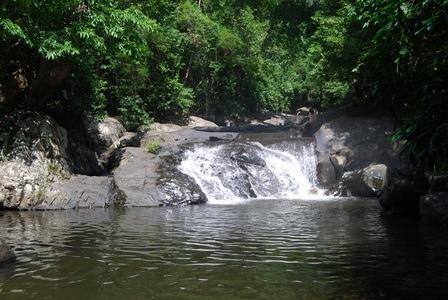 25560109 083139 เที่ยวน้ำตก ชมผีเสื้อ ดูช้างป่า ที่ป่าละอู ..ใกล้ๆหัวหิน