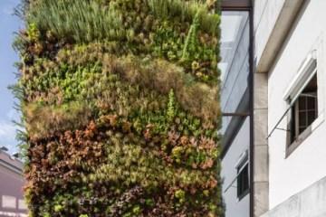 บ้านที่คลุมด้วยต้นไม้ 4,500 ต้น แบบสวนแนวตั้ง