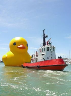 691 281x375 Giant Rubber Duck
