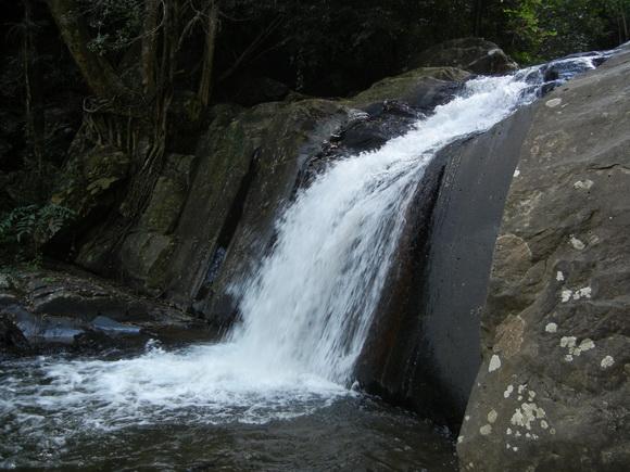 DSCN6011 resize เที่ยวน้ำตก ชมผีเสื้อ ดูช้างป่า ที่ป่าละอู ..ใกล้ๆหัวหิน