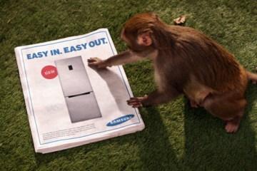 Sponsored Video: โจรจ๋อกับตู้เย็นใหม่จาก Sumsung... 4 - sumsung