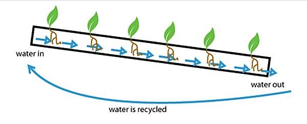 25560210 150031 ระบบสวนแนวตั้ง สำหรับบ้านพื้นที่จำกัด และไม่มีเวลาดูแลรดน้ำ พรวนดิน