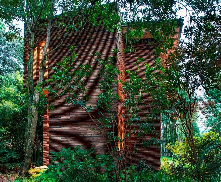 Alejandro Sanchez Garcia Chipicas houses 2 บ้านที่เน้นกลมกลืนกับต้นไม้..เลือกที่จะเพิ่มพื้นที่ในแนวตั้ง เพื่อเก็บต้นไม้ไว้อยู่เป็นเพื่อนกัน