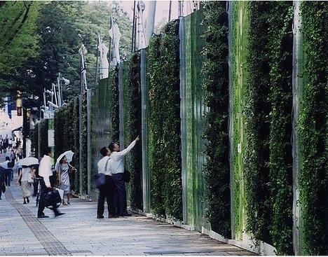25560305 133537 Living wall..สวนแนวตั้ง ที่ไม่ได้เป็นแค่ชิ้นงานศิลปะขนาดใหญ่ แต่ยังเป็นผนังที่มีชีวิตและลมหายใจ ให้ความสุขกับผู้พบเห็น
