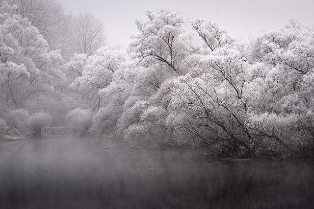 25560308 083537 A Frosty Morning..ภาพยามเช้าที่ห่มคลุมด้วยน้ำค้างแข็ง..สวยงาม สงบนิ่ง