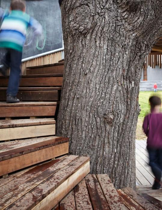 25560320 075510 บ้านต้นไม้..ส่งเสริมจินตนาการและความรักที่มีต่อต้นไม้