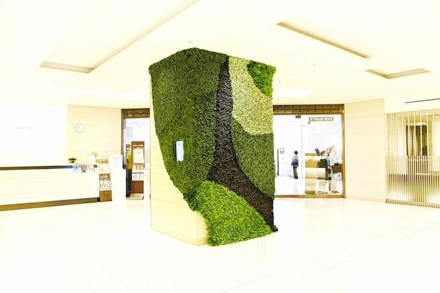 Art of Plants For Isetan Japan Department Store 7 สวนแนวตั้ง ART OF PLANTS ในห้าง ISETAN ที่ญี่ปุ่น